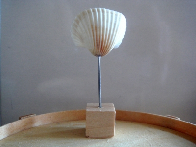SHELL TABLE ART